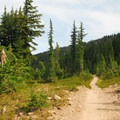 The Pacific Crest Trail en route to Jefferson Park.- Jefferson Park Hike via Jefferson Ridge