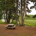 Typical campsite along the shoreline.- Breitenbush Lake Campground