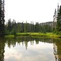 Unnamed adjacent lake and marsh at Breitenbush Lake Campground.- Breitenbush Lake Campground
