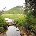 North Fork of the Breitenbush River headwaters.- Breitenbush Lake Campground