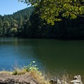 The small inlet at The Culvert access area.- North Fork Reservoir