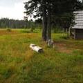 Olallie Meadow Campground.- Olallie Meadow Campground