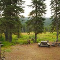 Typical campsite.- Olallie Meadow Campground