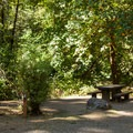 Dolly Varden Campground.- Dolly Varden Campground