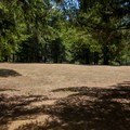 An open field for group activities.- Cascara Campground