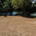 Horseshoes can be rented from the ranger.- Cascara Campground