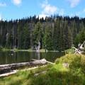 Bird Lake Camping.- Bird Creek Meadows
