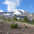 Mount Adams (12,281').- Bird Creek Meadows