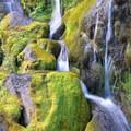 Staircase Falls.- Bird Creek Meadows