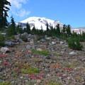 Trail to Hellroaring Viewpoint.- Bird Creek Meadows