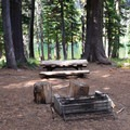 A typical site.- Bird Lake Campground