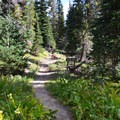 The trail to Bird Creek Meadows.- Bird Lake Campground