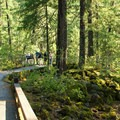 The paved path has a series of select vantage points that are clear and provide plenty of room on busy days.- Rogue Gorge