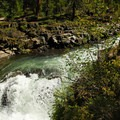 A vantage point just above the main falls provides a close peak at the water.- Rogue Gorge