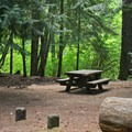 The first riverside campsite along the A Loop at Toketee Campgrond.- Toketee Lake Campground