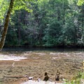 Several Toketee Campground sites have nice access to the Wild and Scenic North Umpqua River.- Toketee Lake Campground
