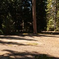 The Simex Group Campround sites are spacious.- Simax Group Campground
