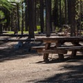 Typical site.- Spring Campground