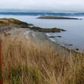 Hiking trails at the destination.- San Juan Island: Cattle Point Natural Resources Conservation Area