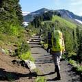 Paradise Park.- Mount Rainier: Disappointment Cleaver Route