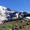 Skyline Trail, Paradise Park.- Mount Rainier: Disappointment Cleaver Route