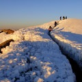 Columbia Crest, the summit.- Mount Rainier: Disappointment Cleaver Route