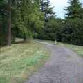 Many trails are wheelchair accessible trail at Hoyt Arboretum.- Hoyt Arboretum