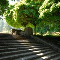 The stairway leading into the International Rose Test Garden.- Washington Park
