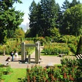 Washington Park's International Rose Test Garden.- Washington Park