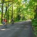 Bicyclists along SW Kingston Drive.- Washington Park