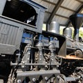 The historic locomotive and railcars at the World Forestry Center.- Washington Park