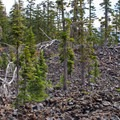 A typically indistinguishable and treacherous path along the route to and from Fumarole Bay.- Wizard Island Summit Trail