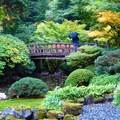 Moon Bridge over the upper pond in Washington Park's Japanese Garden.- Washington Park