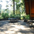 Hoyt Arboretum's large picnic shelter across from the visitor center.- Hoyt Arboretum