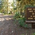 Bonney Meadows Forest Camp.- Bonney Meadows Forest Camp