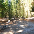A primitive campsite along Barlow Creek.- Barlow Crossing Campground + Campsites