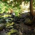 Barlow Creek.- Barlow Crossing Campground + Campsites