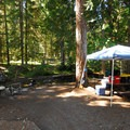 A primitive campsite along Barlow Creek.- Barlow Crossing Campground + Campsites