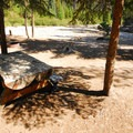 A walk-in campsite at White River Campground.- White River Station Campground