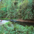 Salmon River from Wildwood Recreation Site.- Wildwood Recreation Site