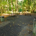 The group picnic area at Wildwood Recreation Site.- Wildwood Recreation Site