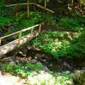 Spray Park and Waterfall hiking trail.- Spray Waterfall + Spray Park Hike