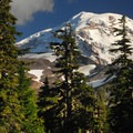 First view of Mount Rainier (14,411') from Spray Park.- Spray Waterfall + Spray Park Hike