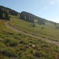 View looking east on the Sourdough Ridge Trail.- Burroughs Mountain Hike