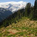 Mount Rainier (14,411') and Little Tahoma Peak (11,138') from the Silver Forest Trail.- Silver Forest Trail