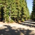 White River Campground.- White River Campground