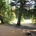 One of seven primitive campsites at Sunrise Camp.- Sunrise Camp