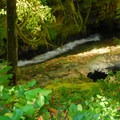 Purcell Falls is accessed via a short trail from the campground.- La Wis Wis Campground