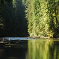 Ohanapecosh/Cowlitz River from La Wis Wis Campground.- La Wis Wis Campground