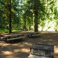 Coho Group Site at La Wis Wis Campground.- La Wis Wis Campground